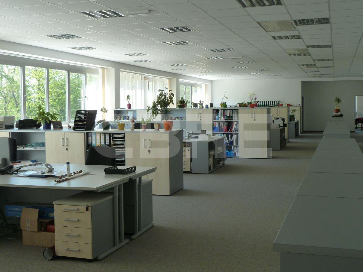 Ivanka pri Dunaji - 2475 m2, Bratislavský kraj, Bratislava | Prenájom a predaj skladov a výrobných hál od CBRE | 5
