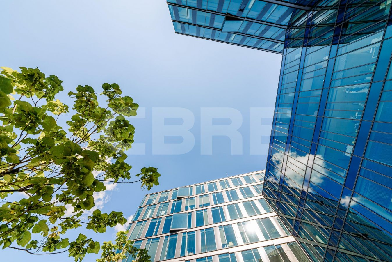 Digital Park phase III, Bratislava - Petržalka | Offices for rent by CBRE | 5